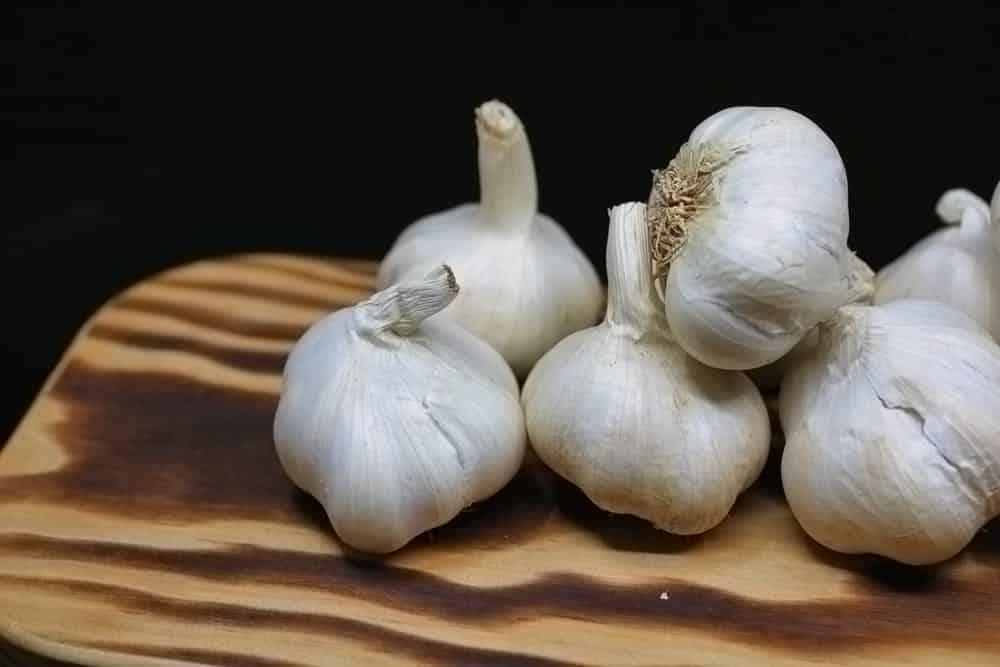 Benefits-of-spices-in-food-garlic